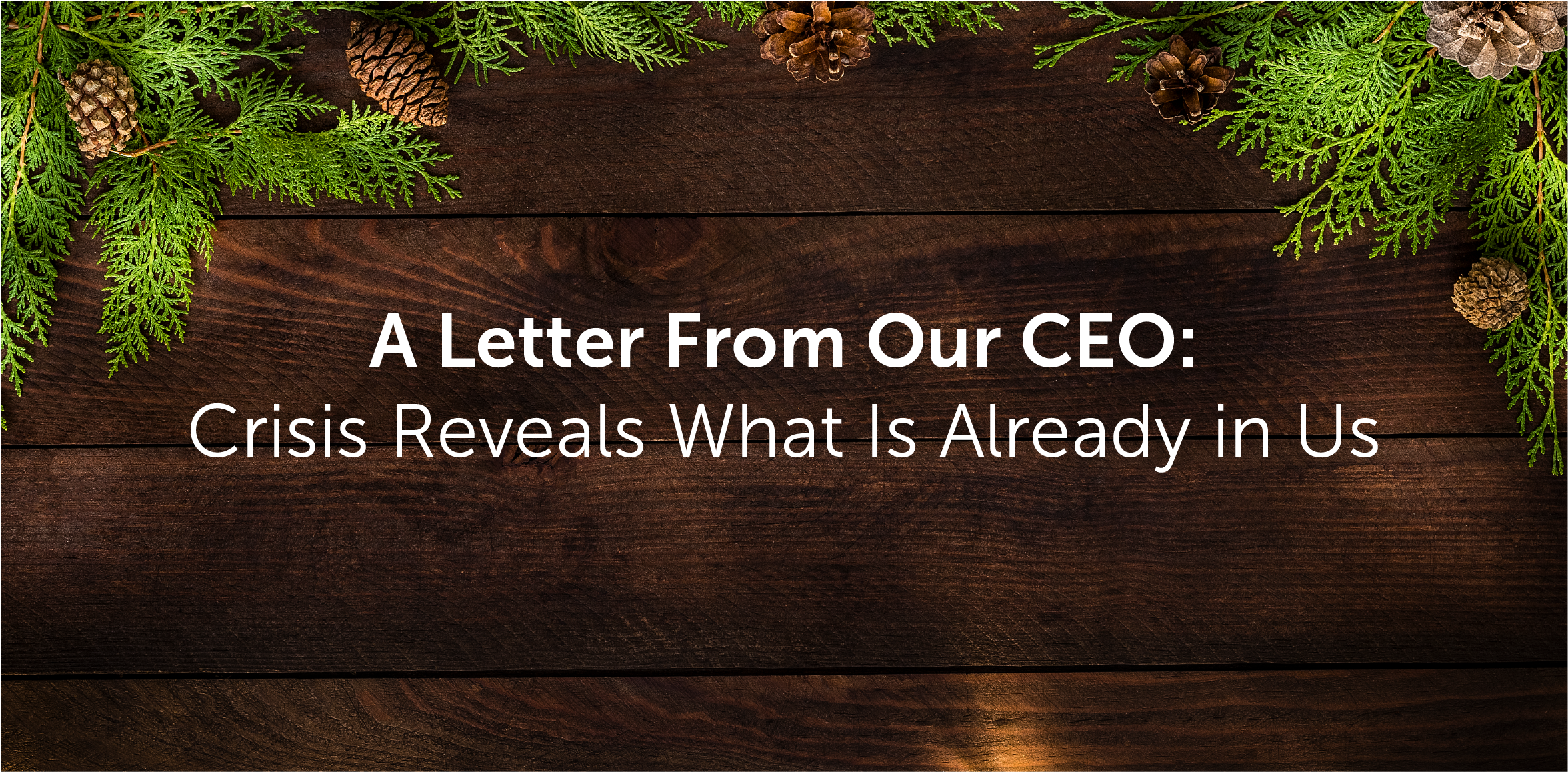 A Letter From Our CEO: Crisis Reveals What Is Already in Us